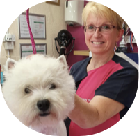 Pooch Perfect Canine Stylist & Spa
