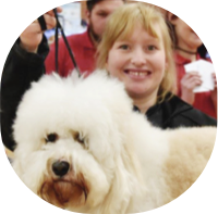 First Class Dog Grooming
